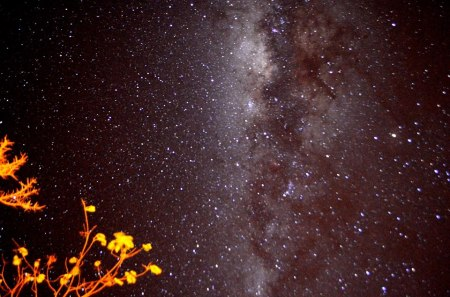 Céu Espetacular da Chapada dos Viadeiros | Foto: Mel Melissa Maurer