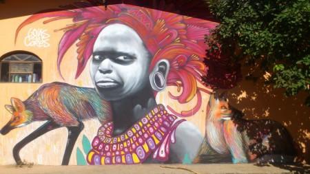 grafite-parede-chapada-veadeiros