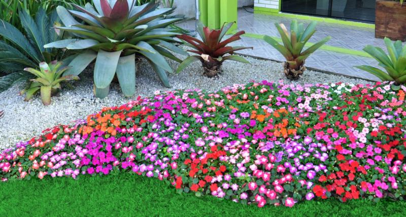 flores-coloridas-equilibrar-energia-jardim-feng-shui