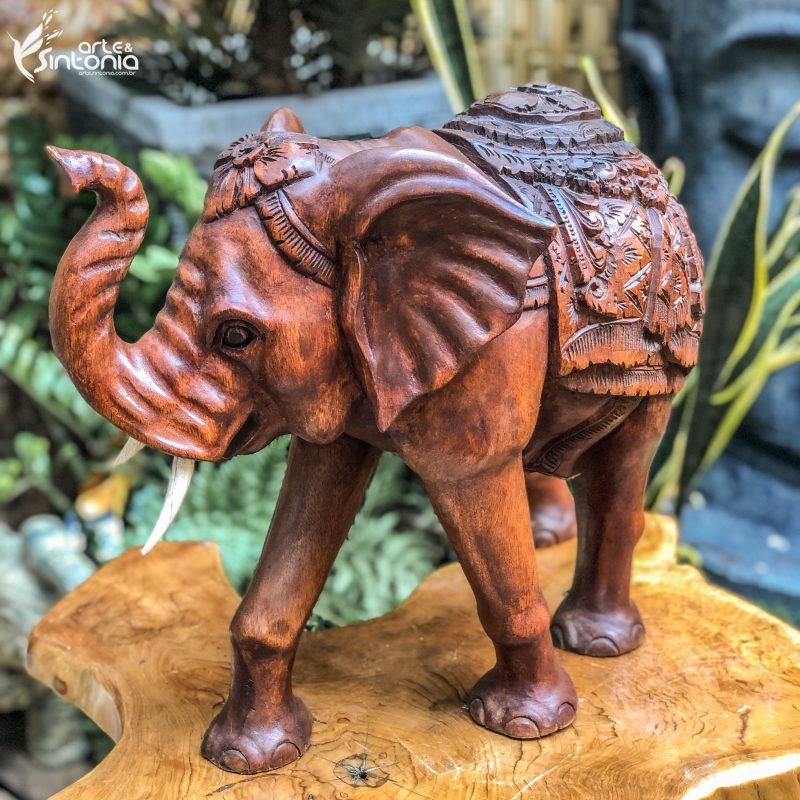 escultura-elefante-decorativo-madeira-suar-decoracao-zen