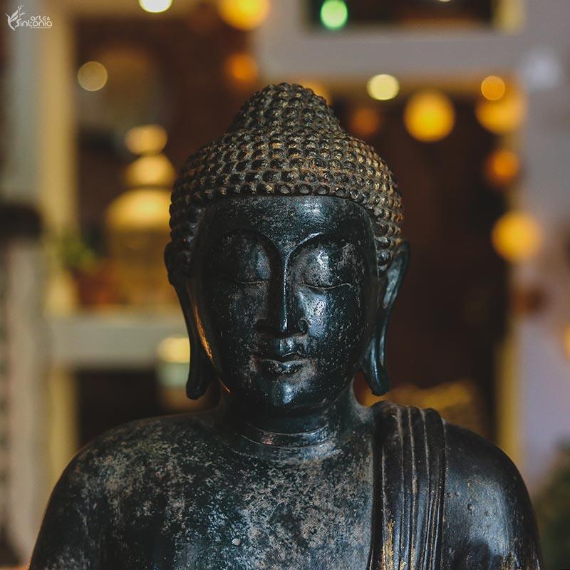 Tipos De Budas A Variação De Elementos Nas Imagens De Buddha Blog Arte Sintonia